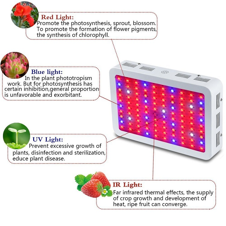 1200W LED Plant Grow Lights