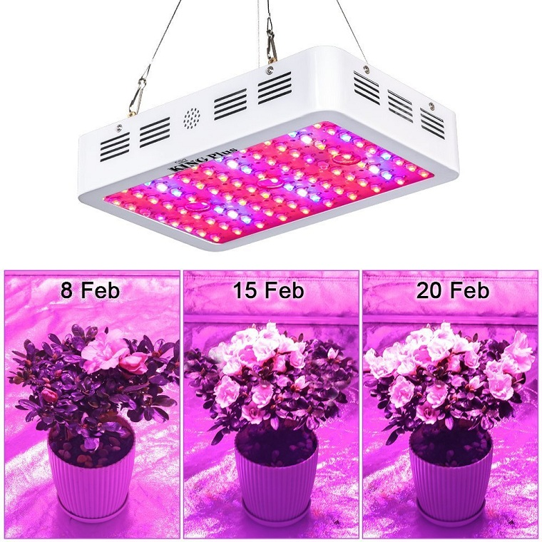 Best Led Grow Lights For Indoor Plants (Plant Grow Lights