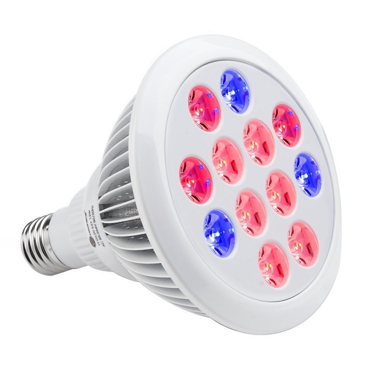 Indoor Plants Plant Grow Lights